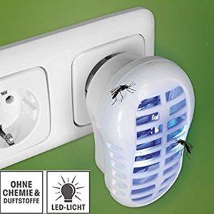EASYmaxx Insektenfallen 2x2er Set Indoor 10 % billiger kaufen | Test und Erfahrungen
